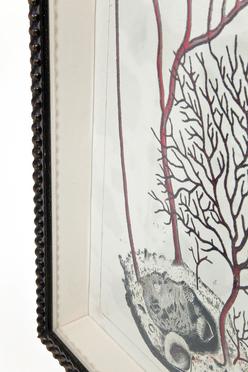 35808 quadro coral collection II kare design outlet arredo design brescia vescovato 4